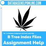 B Tree Index Files