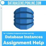 Database Instances